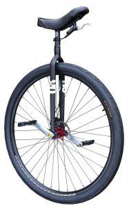 QX RGB Eenwieler 36 inch zwart